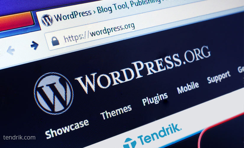 Choose WordPress For Your Blog or Website - Tendrik